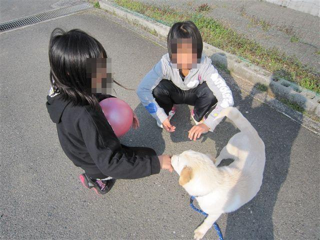 f:id:yasukazu01:20120328155311j:image