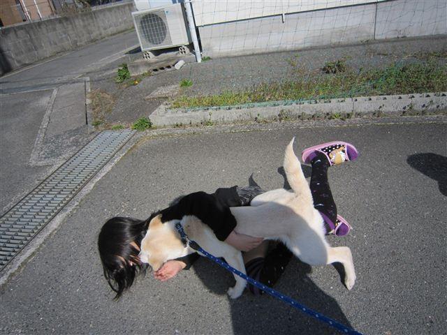 f:id:yasukazu01:20120401151645j:image