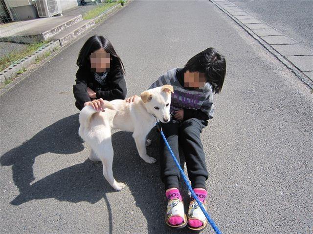 f:id:yasukazu01:20120401151739j:image