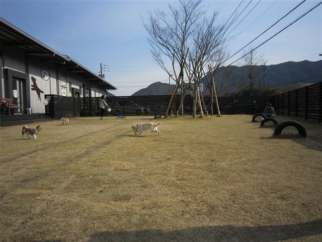 f:id:yasukazu01:20120404155451j:image