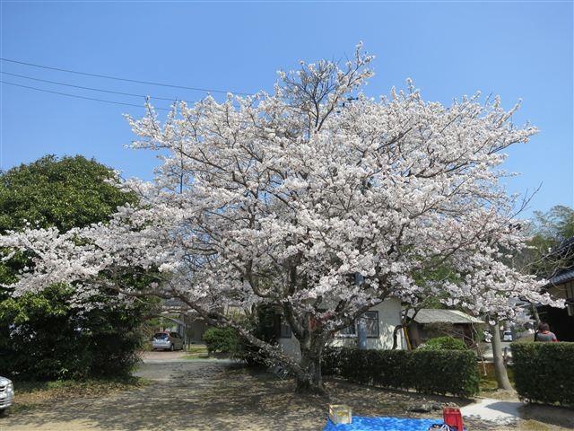 f:id:yasukazu01:20120408114111j:image