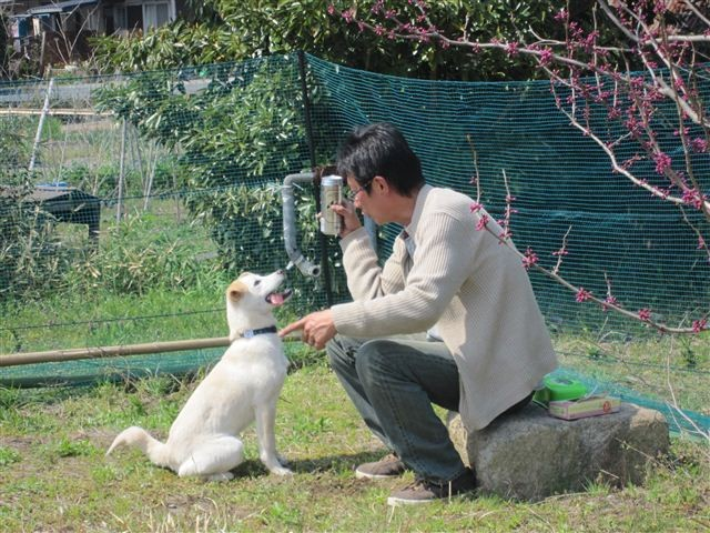 f:id:yasukazu01:20120408135731j:image