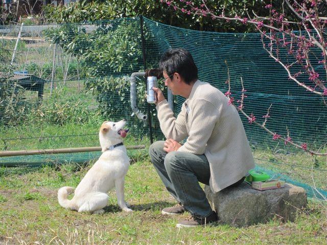 f:id:yasukazu01:20120408135738j:image