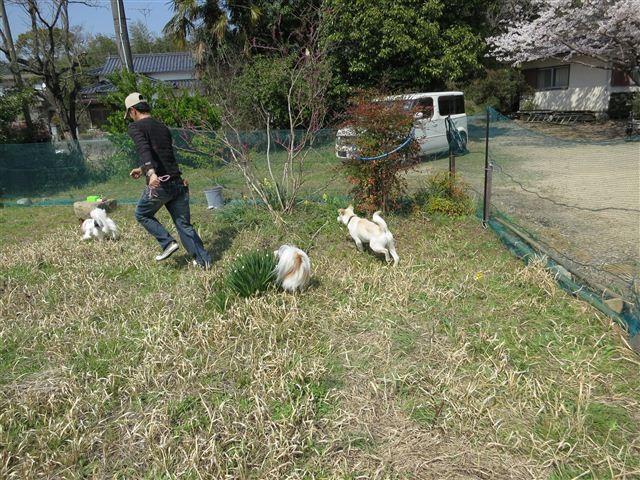 f:id:yasukazu01:20120408140501j:image