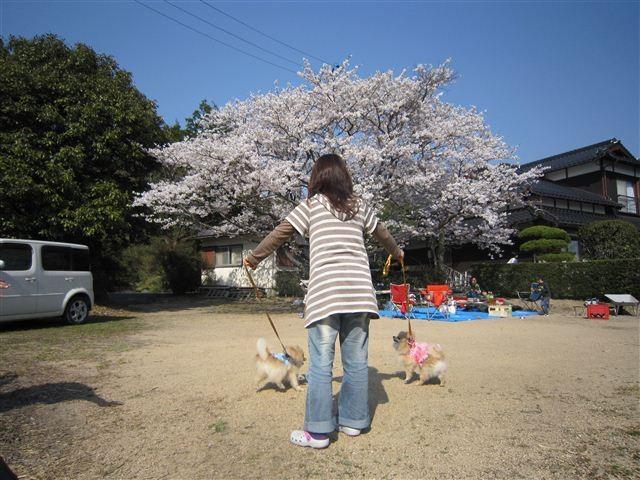 f:id:yasukazu01:20120408152317j:image