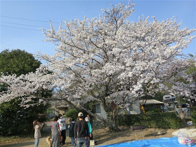 f:id:yasukazu01:20120408163043j:image