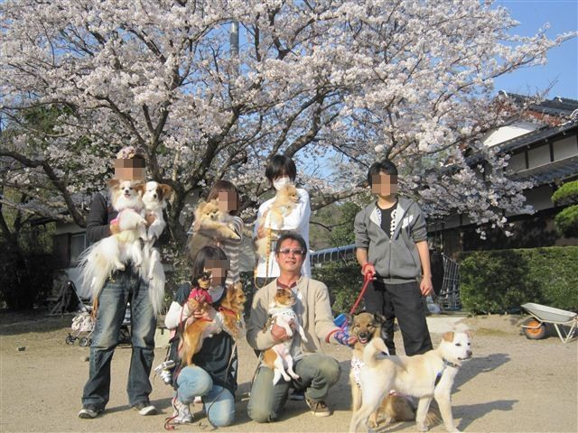 f:id:yasukazu01:20120408164239j:image