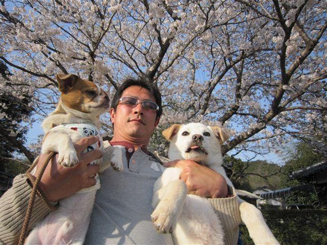 f:id:yasukazu01:20120408164619j:image