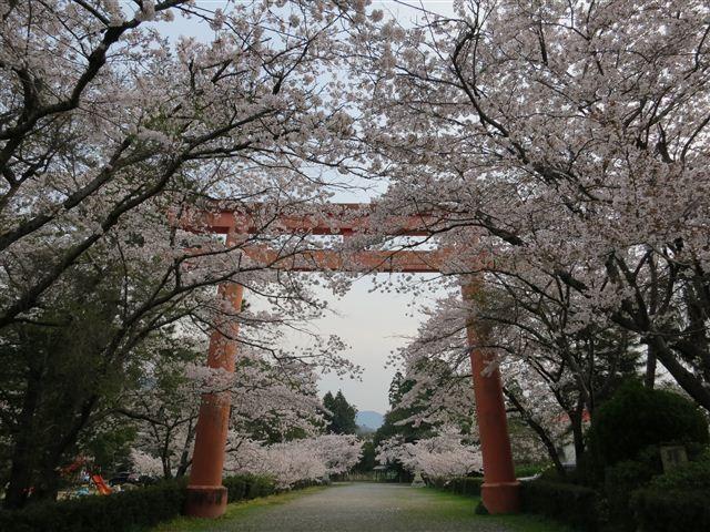 f:id:yasukazu01:20120410071249j:image