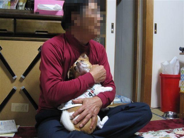 f:id:yasukazu01:20120413193758j:image