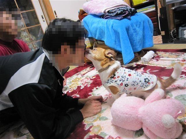 f:id:yasukazu01:20120413194137j:image