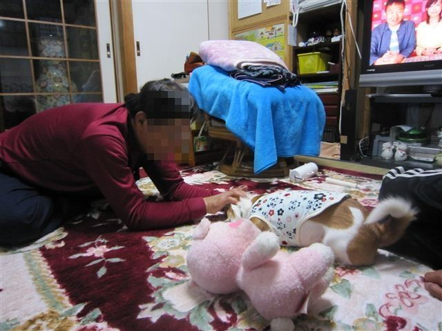 f:id:yasukazu01:20120413194505j:image