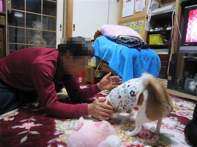f:id:yasukazu01:20120413194514j:image