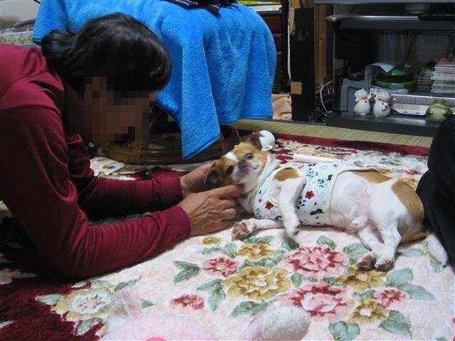 f:id:yasukazu01:20120413194813j:image