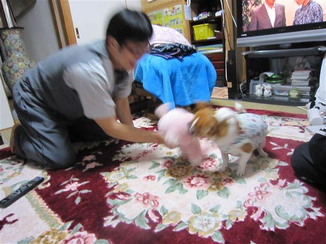 f:id:yasukazu01:20120413212336j:image