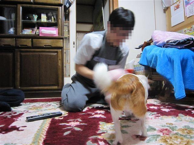 f:id:yasukazu01:20120413212411j:image