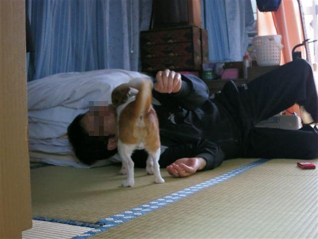f:id:yasukazu01:20120414065525j:image