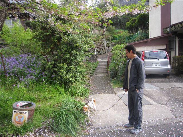 f:id:yasukazu01:20120414074904j:image