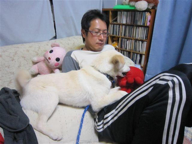 f:id:yasukazu01:20120419195705j:image