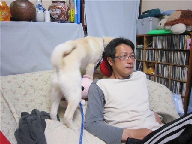 f:id:yasukazu01:20120419195736j:image