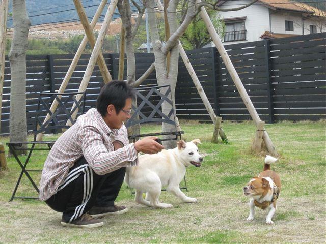 f:id:yasukazu01:20120420125824j:image