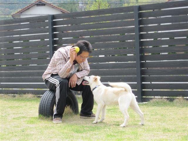 f:id:yasukazu01:20120420132842j:image