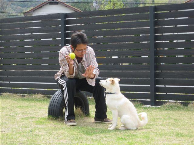 f:id:yasukazu01:20120420132856j:image