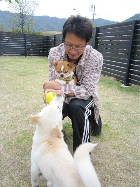 f:id:yasukazu01:20120420133629j:image