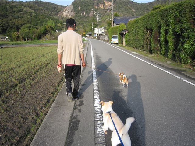 f:id:yasukazu01:20120422172754j:image