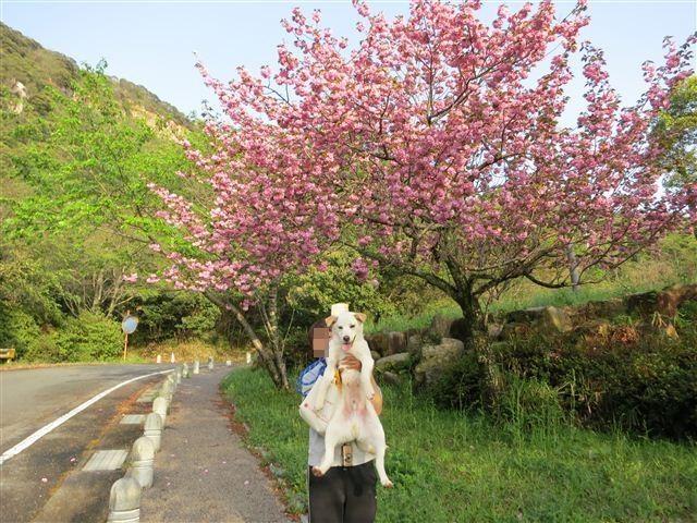 f:id:yasukazu01:20120422173647j:image