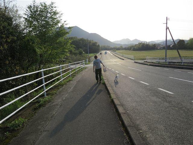 f:id:yasukazu01:20120422174537j:image