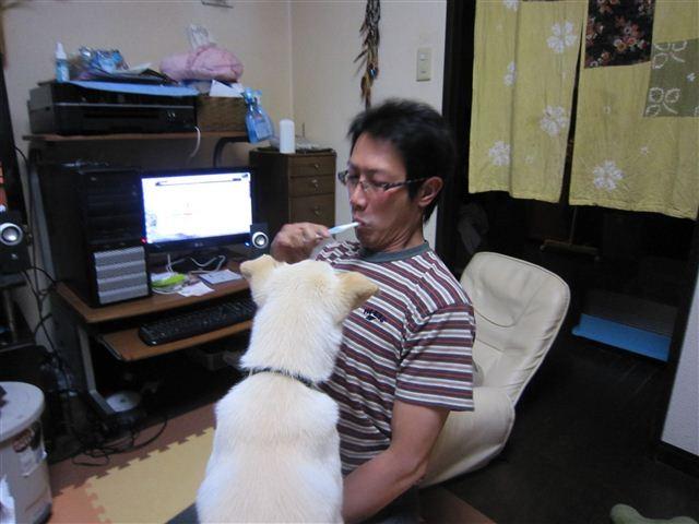 f:id:yasukazu01:20120426221821j:image