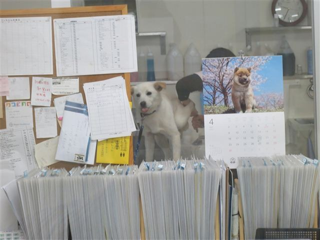 f:id:yasukazu01:20120427093058j:image