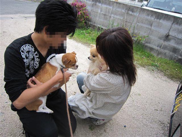 f:id:yasukazu01:20120429154357j:image