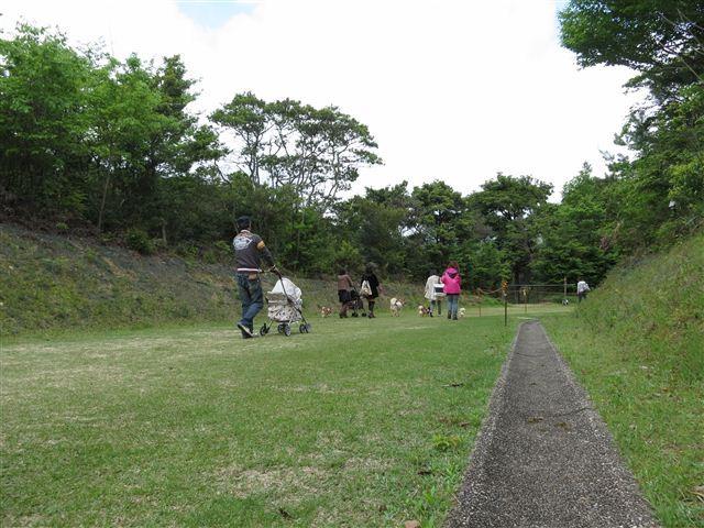 f:id:yasukazu01:20120504112243j:image
