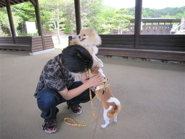 f:id:yasukazu01:20120504121427j:image