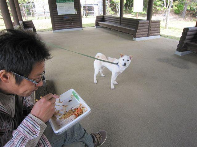 f:id:yasukazu01:20120504124054j:image