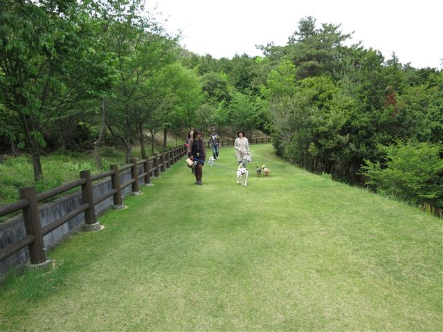 f:id:yasukazu01:20120504133905j:image