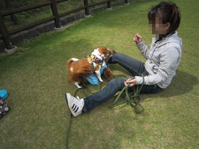 f:id:yasukazu01:20120504140302j:image