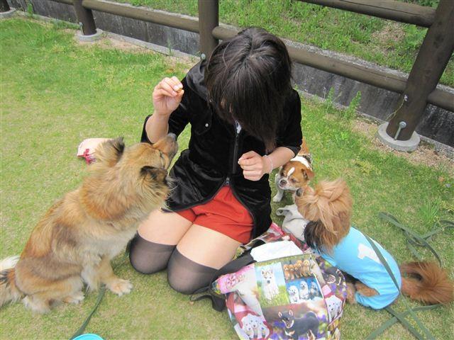 f:id:yasukazu01:20120504145757j:image