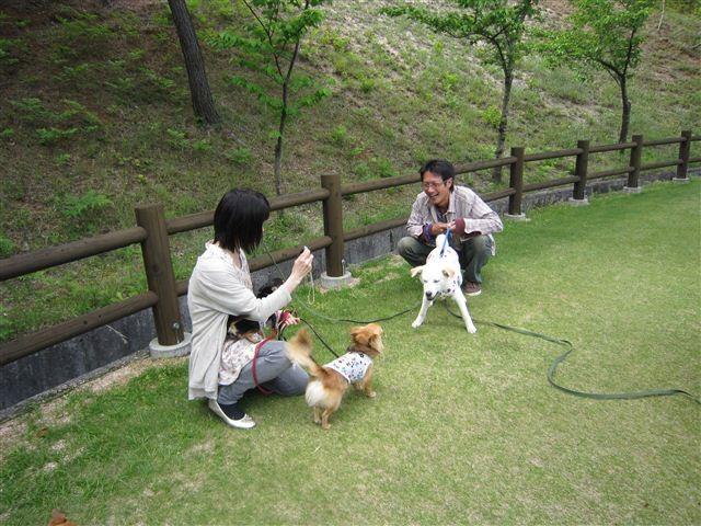 f:id:yasukazu01:20120504151530j:image