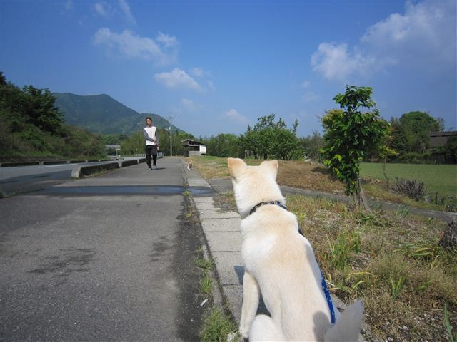 f:id:yasukazu01:20120506091524j:image