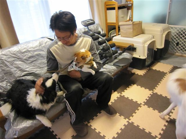 f:id:yasukazu01:20120510181426j:image