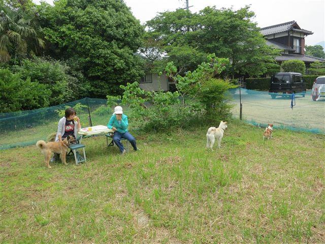 f:id:yasukazu01:20120526103926j:image