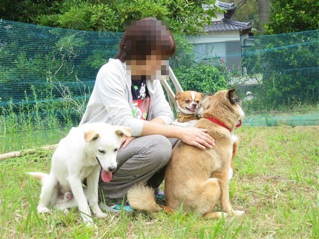 f:id:yasukazu01:20120526104142j:image