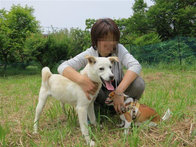 f:id:yasukazu01:20120526105727j:image