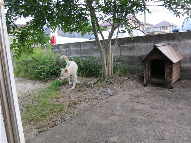 f:id:yasukazu01:20120529184854j:image