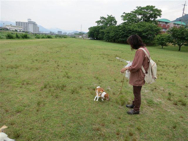 f:id:yasukazu01:20120603085019j:image