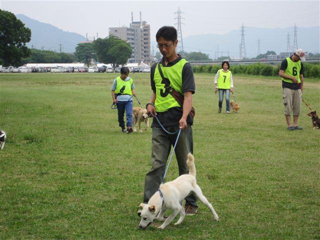 f:id:yasukazu01:20120603095053j:image