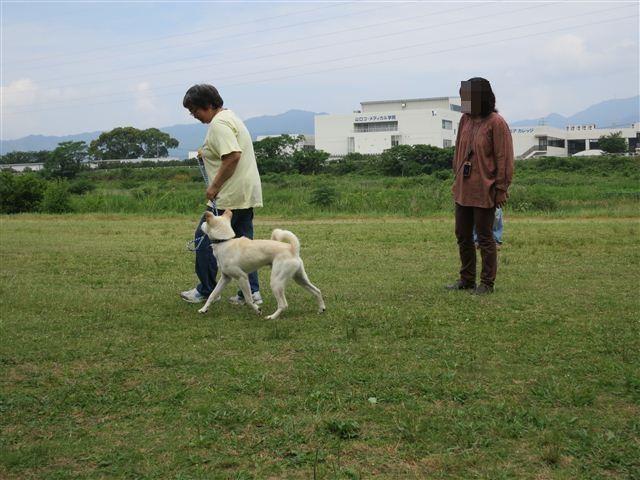 f:id:yasukazu01:20120603101300j:image